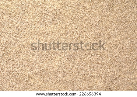 Sesame Seeds Surface Texture Top View Close up. Pattern Background - stock photo