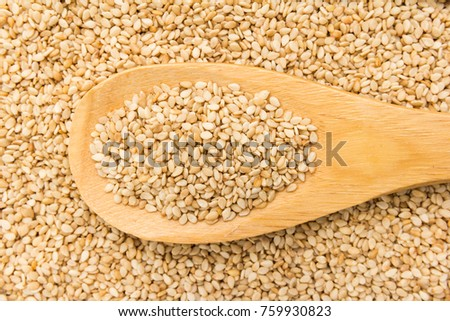 Sesamum indicum is scientific name of Sesame. Also known as Gergelim (portuguese) and Sesamo (spanish). Grains in wooden spoon. Close up.