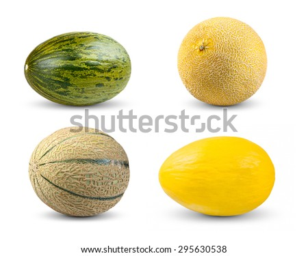 Set Collection of Melon. Cantaloupe, Galia,  Piel de sapo and Honeydew. Isolated on white background - stock photo