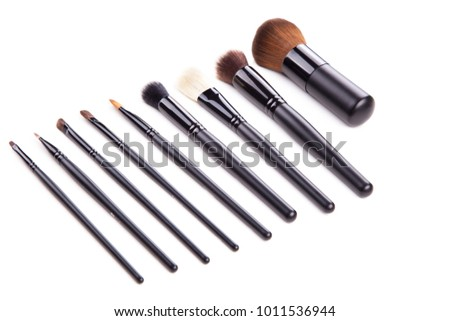 Set collection professional cosmetic brush for makeup, on isolated white background.