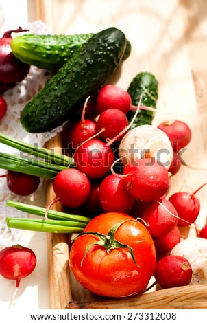 set fresh vegetables on a wooden tray for cooking. tomatoes, mushrooms, cucumber, radish, onion, blue, green onion young. - stock photo