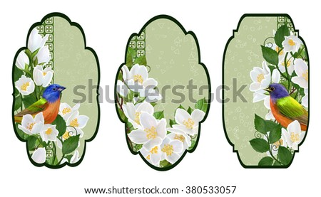 Set labels. Card, invitation, business card. Flower pattern. The bright bird on a branch of a blooming white jasmine in the spring.