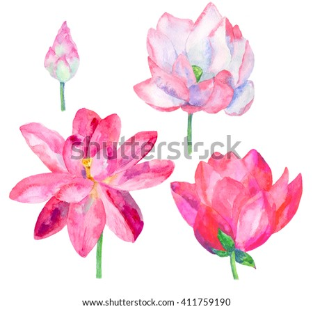 set lotus flowers isolated, watercolor illustration - stock photo