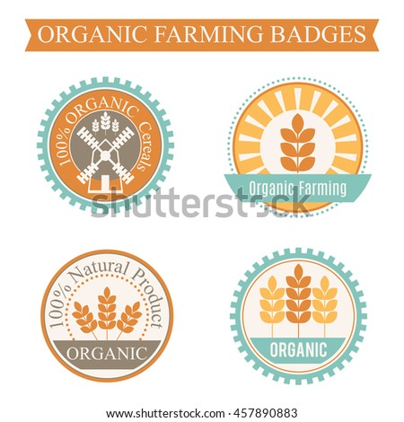 Set of 4 agricultural and farming badges (cereal cultivation - organic farming and natural healthy food). Minimalistic design and harmonious colors (orange, turquoise, brown)
