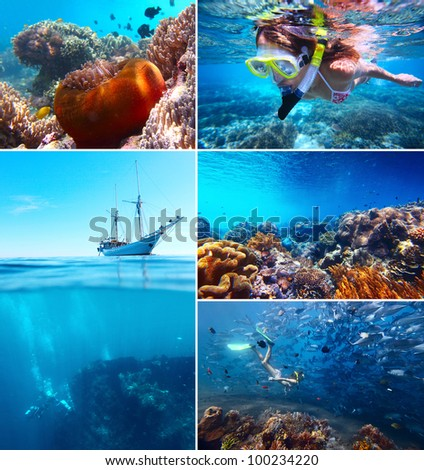 Set of an underwater pictures of tropical sea, water activities and vivid marine life - stock photo