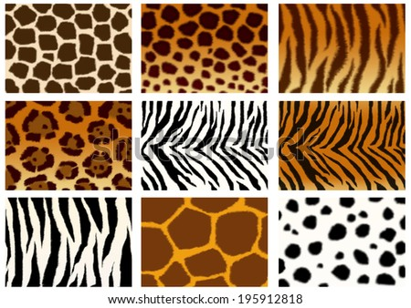 Set of animals skins textures  - stock photo
