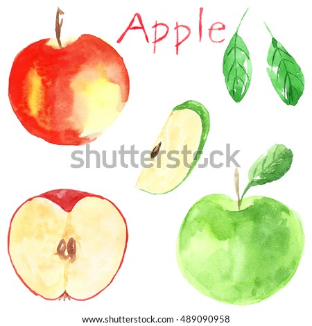 Set of apples. Watercolor illustration. Fruit. Red Green. Isolated.