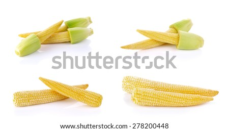 Set of Baby corn isolated on a white background. - stock photo