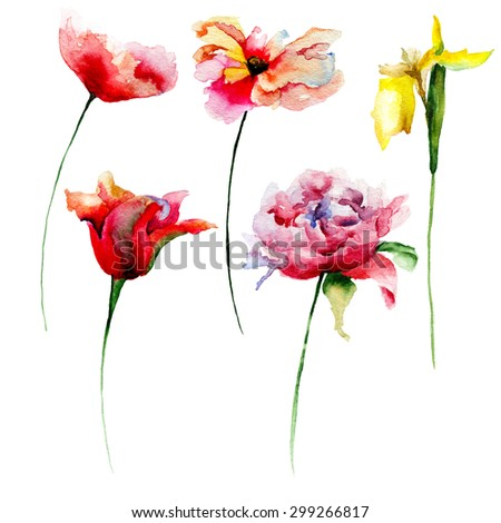 Set of beautiful flowers for design. Watercolor illustration