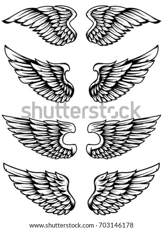 Set of bird wings isolated on white background. Design elements for logo, label, emblem, sign.