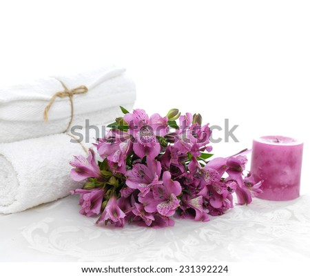Set of branch orchid on the white lace background - stock photo
