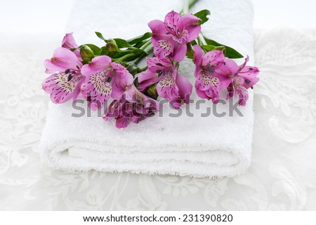Set of branch pink orchid on towel and white lace  - stock photo