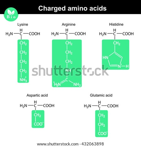 Amino Acids Stock Images, Royalty-Free Images & Vectors ...