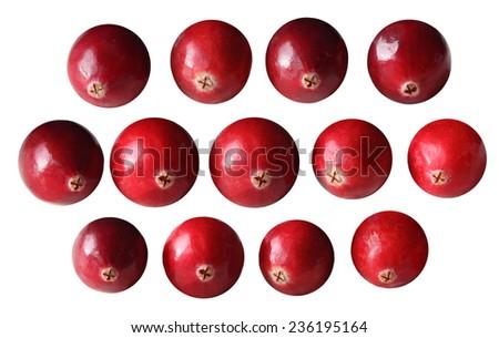 Set of cranberry fruits isolated on white background - stock photo