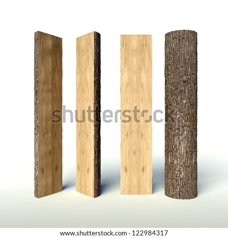 Set of Cut tree trunk, cross section planks