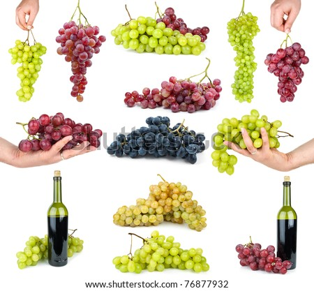 Set of different grapes  isolated on the white background - stock photo