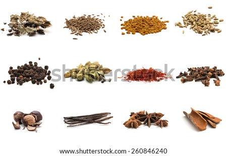 Set of different spices. Isolated on white background - stock photo
