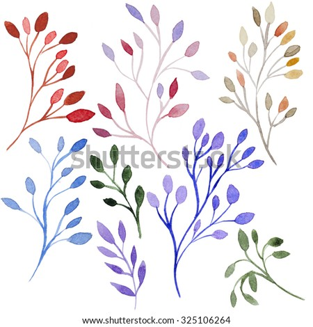 Set of different watercolor branch  whith leaves. Set of hand-drawn watercolor beautiful red and yellow autumn branch.  - stock photo