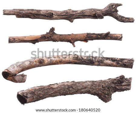 stock-photo-set-of-dry-tree-branch-isolated-on-white-background-180640520