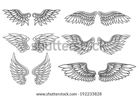 Set of eagle or angel wings for heraldry and tattoo design. Vector version also available in gallery - stock photo
