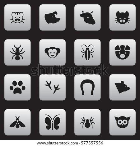 Set 16 Editable Animal Icons Includes Stock Illustration 577557556