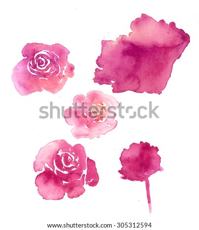 Set of flower rose, traditional drawing and painting by water-color on white background - stock photo