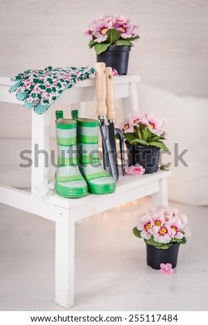 Set of garden tools and garden flowers - stock photo