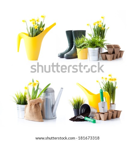 Set of gardening tools and garden flowers  - stock photo