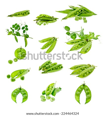 Set of green peas in pods in isolation - stock photo