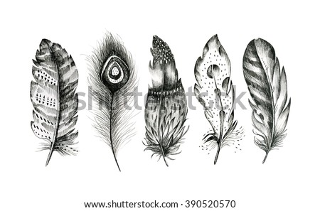 set of hand drawn feathers on white background. Boho decoration  black and white  illustration of line elements. Bird fly design for T-shirt, invitation, wedding card.Rustic  - stock photo