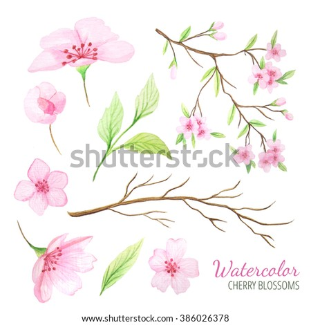 Set of hand painted watercolor cherry flowers, branches and leaves. Spring cherry blossoms theme in delicate pink and green colors. Clip art elements perfect for wedding invitations and card making - stock photo
