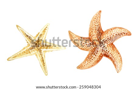 Set of hand painted watercolor starfishes isolated on white background. - stock photo