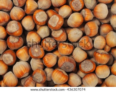 Set of hazelnuts, can be used as a background - stock photo