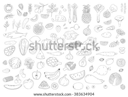 Set of healthy food. Fish, cheese, herb, vegetables, fruit, berries. Linear hand drawn elements. Icons. Raw, vegeterian. - stock photo