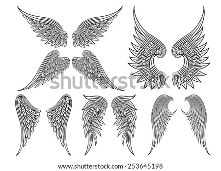 Set of heraldic wings or angel wings drawn black lines - stock photo