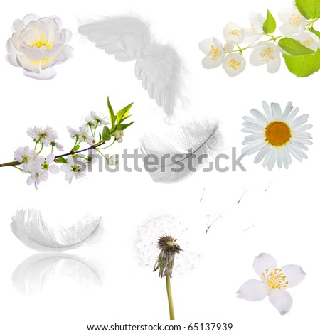 set of isolated objects which can be associated with purity - stock photo