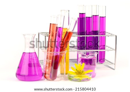 Set of laboratory equipment with chemical solutions and young sunflower on white background. - stock photo