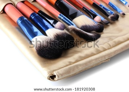 Set of make-up brushes in golden leather case isolated on white - stock photo