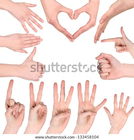 Set of many different hands over white background - stock photo