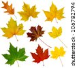 Set of nine isolated autumn leaves - stock photo