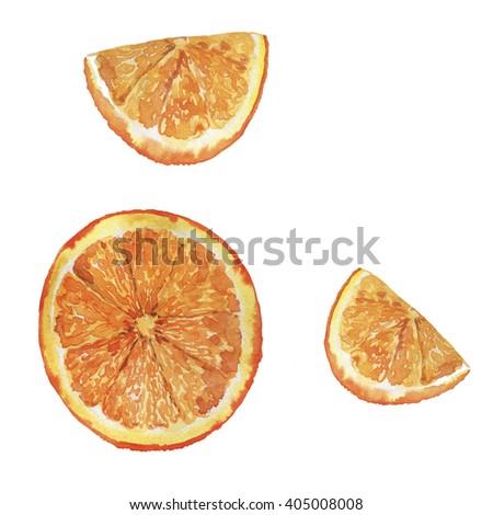 Set of orange slices on white background. Hand drawn watercolor illustration. - stock photo