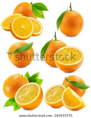 set of oranges isolated on the white background - stock photo