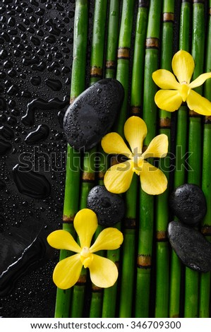 Set of orchid with black stones on bamboo grove-wet background  - stock photo