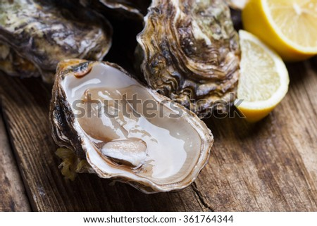 set of oysters with lemon slices on wooden background