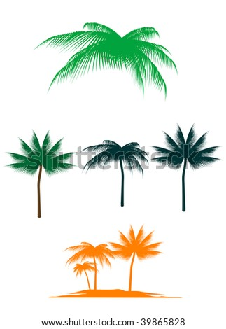 Set of palm trees for design. Vector version also available - stock photo