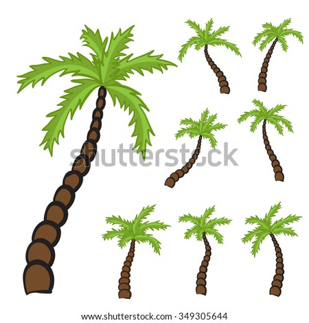 Set of Palm trees, isolated illustration