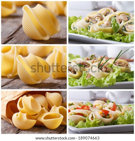 Set of photo Italian pasta lumakoni stuffed and dry closeup