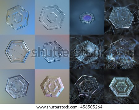 Set of 12 real snowflake photos (simple hexagonal plate snow crystals). 6 snowflakes on the left side captured at glass with LED back light, 6 crystals on right - at dark wool fabric in natural light.