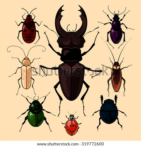 Set of realistic images of bugs, isolated on neutral background (raster version) - stock photo