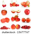 Set of red fruits, berries and vegetables isolated on the white background - stock photo